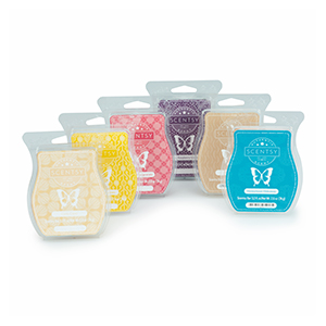 6 Pack Scentsy Bars