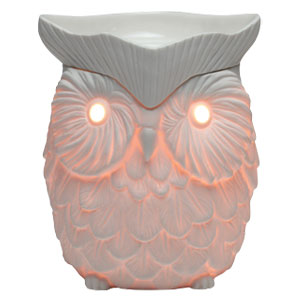 Whoot Scentsy Warmer