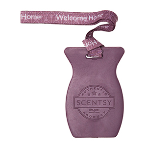 Welcome Home Scentsy Car Bar