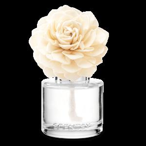 Cozy Cardigan Fragrance Flower - Dahlia Darling