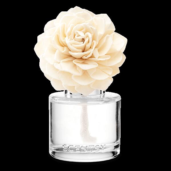 Very Snowy Spruce Fragrance Flower - Dahlia Darling